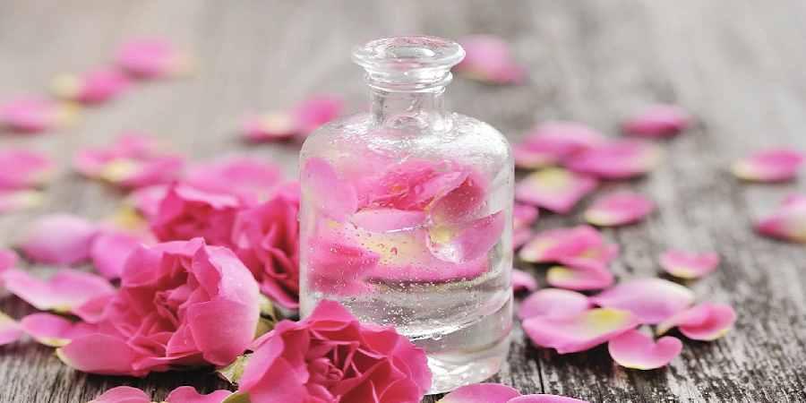 راهنمای تشخیص و خرید گلاب اصل و با کیفیت کاشان