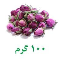 غنچه گل محمدی کاشان